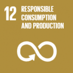 United Nations Global Goal 12, Responsible Consumption and Production